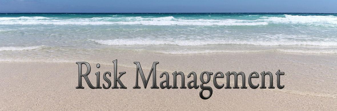 risk management - dale s richards